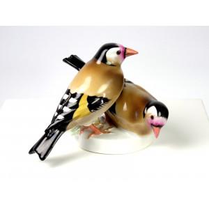 Finch Birds, Galluba & Hofmann