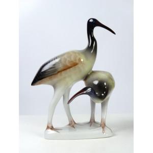 Ibis Birds, Hollohaza
