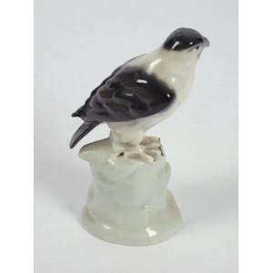 Bird of Prey, Galluba &...