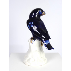 Cobalt Blue Parrot by...